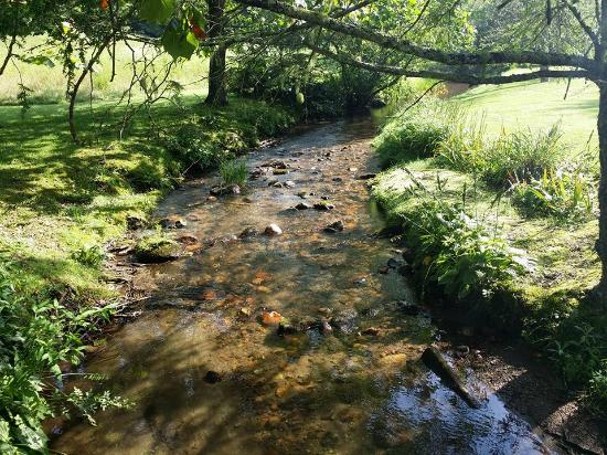 Valley Springs Lodging: Creek on property.
