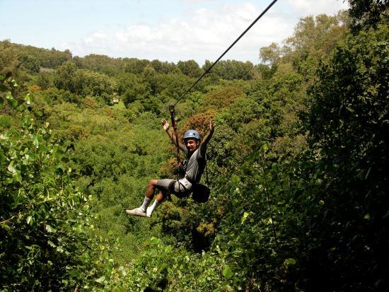 Big Island Eco Adventures II Zipline Canopy Tour: BIEA Zipline tour