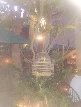 Endroit tr s intime calme qui nous fait un rappel aux for Le jardin 32 route sidi abdelaziz marrakech 40000