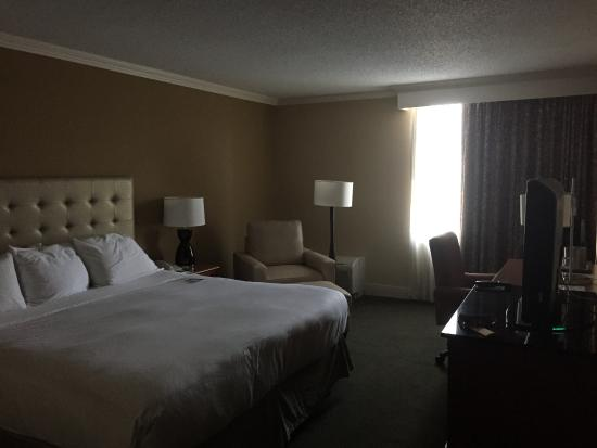 Radisson Hotel Rochester Airport: King Bed