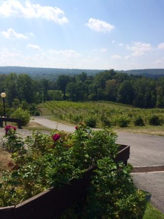 Six Mile Creek Vineyard : Six Mile Creek Winery