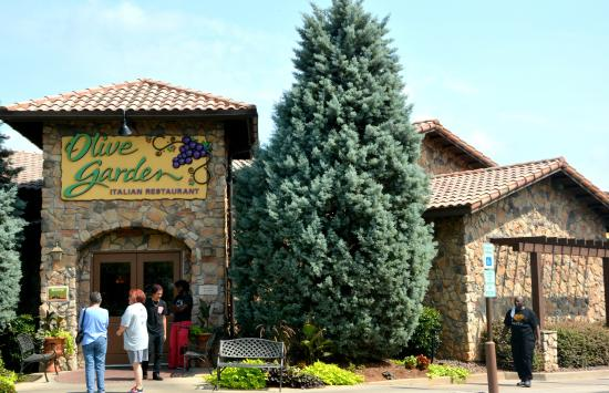 Olive Garden, Concord - Menu, Prices & Restaurant Reviews - TripAdvisor