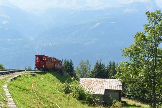 Brienz Rothorn Bahn: Steam train climbing uphill (3)