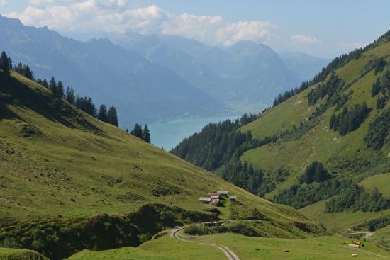 Brienz Rothorn Bahn: Steam train climbing uphill (2)