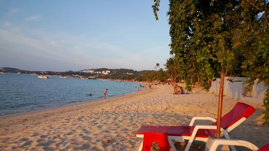 Villa Labaron: Beach