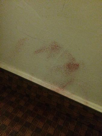 Motel 6 Harrisonburg - South: photo0.jpg