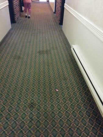 Highwayman Inn & Conference Centre: stains on the hallway carpet