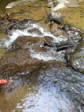 Camp Creek, Virginia Occidental: Creek