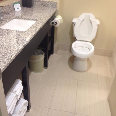 Comfort Suites University - Research Park: Bathroom