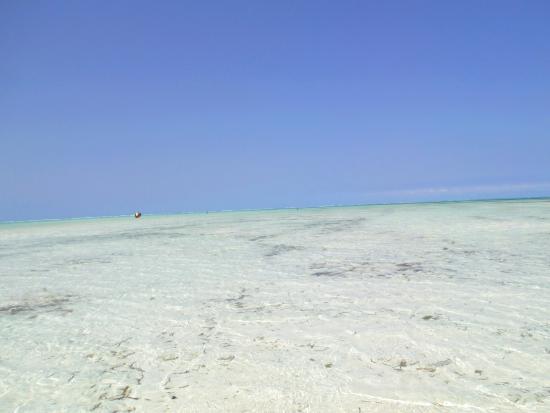 Hakuna Majiwe Beach Lodge: spiaggia