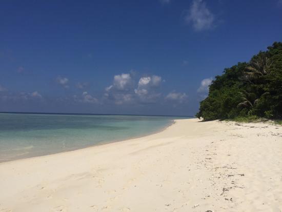 Scuba Junkie Mabul Beach Resort: Sipidan
