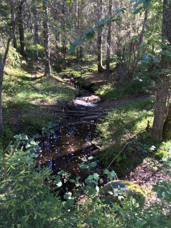 Hertsostigen Trail