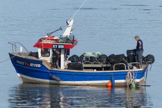 Auchencairn, UK: local lobster boat