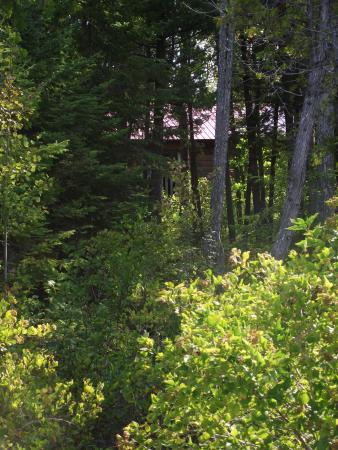 Silver Birches Resort: Nice trail to the lake