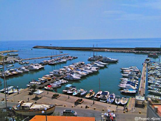 Hotel la Scogliera: Vista del porto dalla terrazza del ristorante
