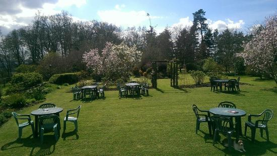 Stable Cottage Tea Room: Garden seating