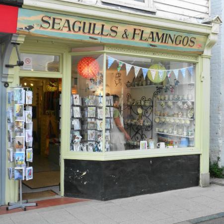 Seagulls & Flamingos