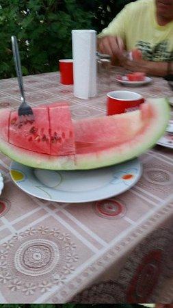 Dionysia Studios : Melon