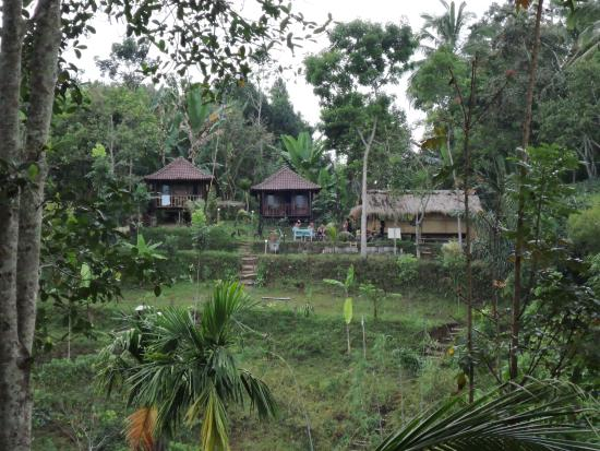 Kotaraja, Indonesia: The bungalows from the other side of the valley