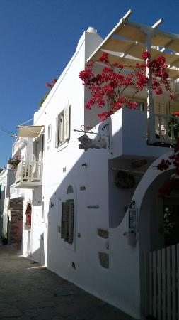 Villa Katapoliani I: villa1