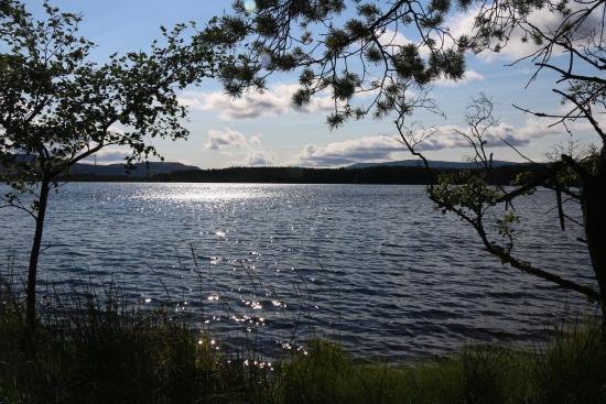 RSPB Loch Garten: Loch Garten