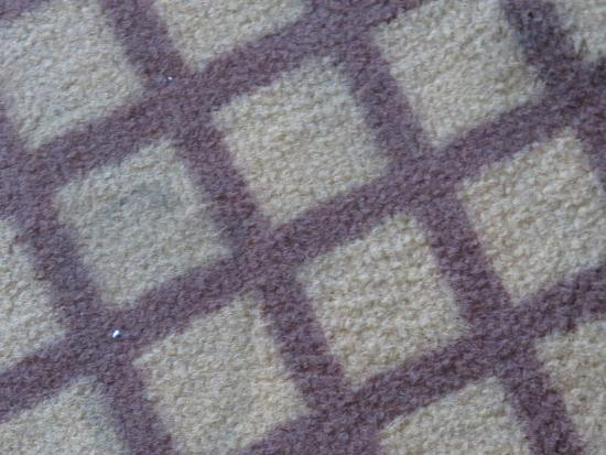 Aro Palace: The rugs are filthy and with stains.