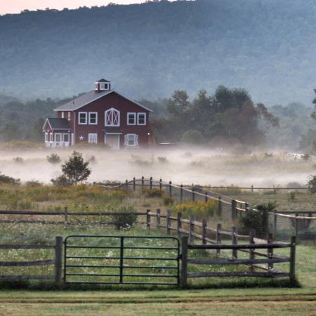 Photo9 Jpg Picture Of Mountain Horse Farm B Amp B And