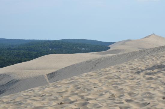 Picture of dune du pilat la teste de buch tripadvisor - Hotel dune du pilat ...