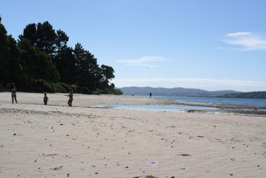 Playa Lechagua