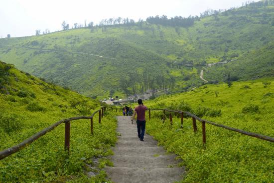 Reserva Nacional Lomas de Lachay: Subiendo al Mirador de las Lomas de Lachay.