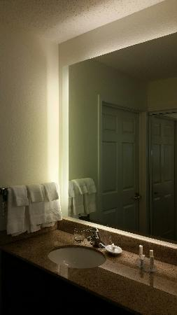 "Residence Inn Detroit Livonia: ""Backlit"" Bathroom Mirror"