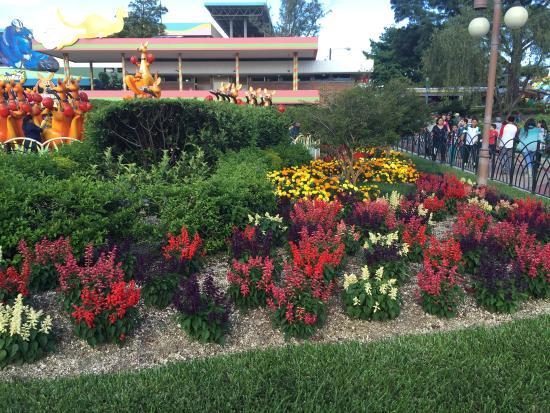 Mundo Petapa Irtra: Beautiful gardens