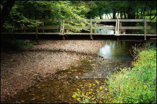 Bonne Terre, MO: Coonville Creek  St. Fraincois State Park