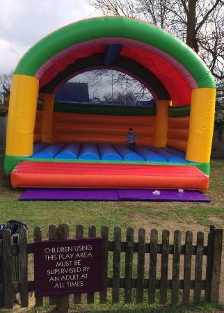 Crocodile: bouncy castle