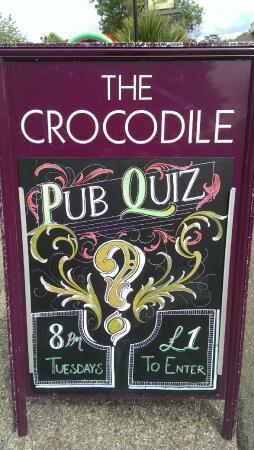 Crocodile: quiz nights