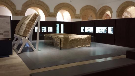 Nuovo Museo Archeologico di Ugento (Museo Civico)
