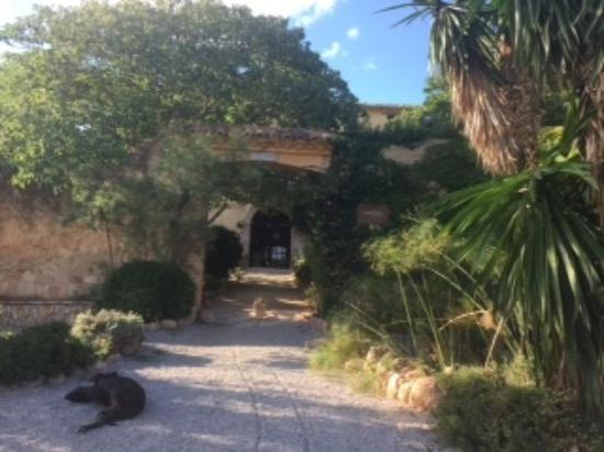 Sant Jaume dels Domenys, España: Entrada