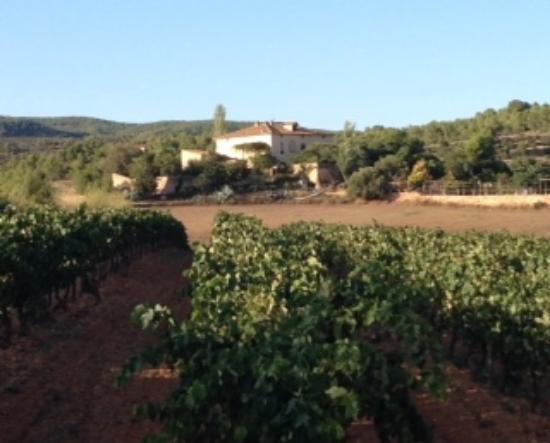 Sant Jaume dels Domenys, España: Vista del Hotel