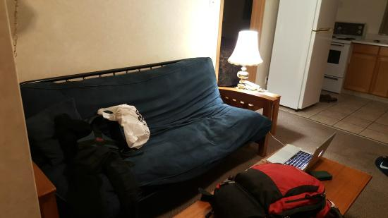 Sline Old Futon In The Living Area