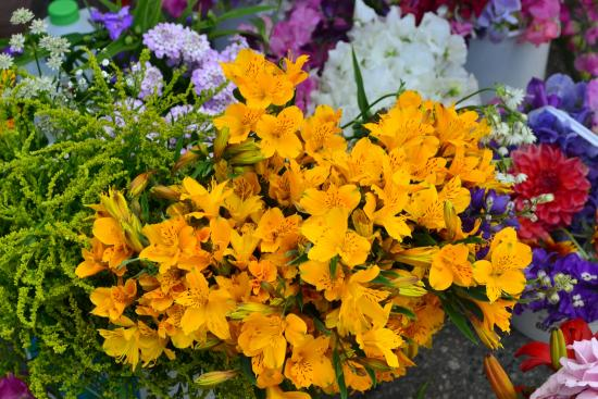 Penticton Farmers' Market : Freshly picked flowers at stall at market