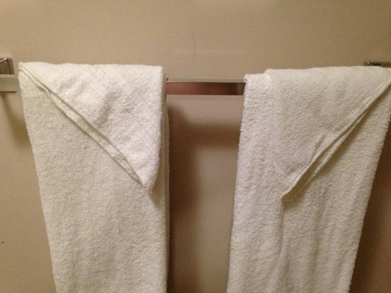 Motel 6 Greenville SC: Threadbare towels
