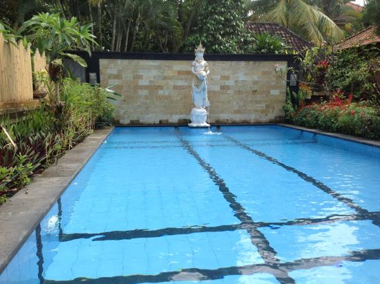 Gunung Merta Bungalows: The beautiful pool is most welcomed each day
