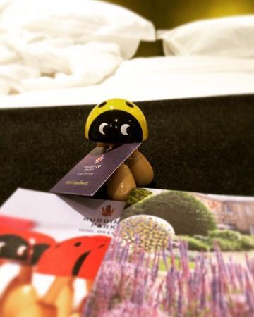 Rudding Park Hotel: photo0.jpg