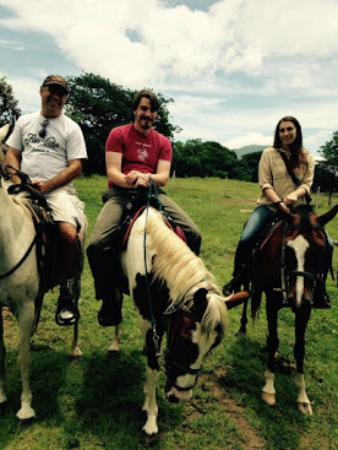 Painted Pony Horse Tours : horses
