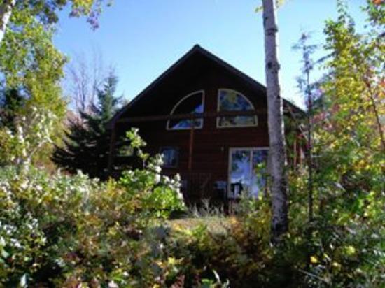 Scott's Superior Inn & Cabins: lake side of the cabin