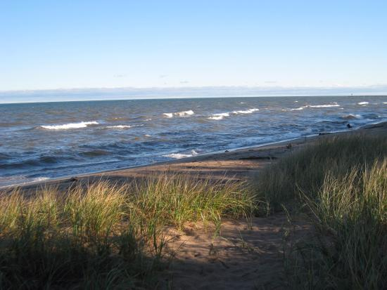 Scott's Superior Inn & Cabins: Beach in the morning
