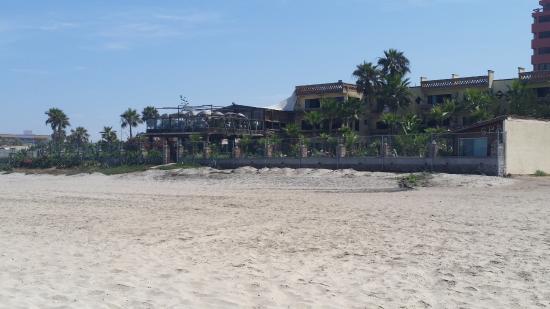 Los Pelicanos Hotel: Los Pelicanos is close to the shore