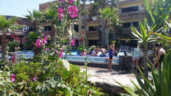 Los Pelicanos Hotel: Pool area