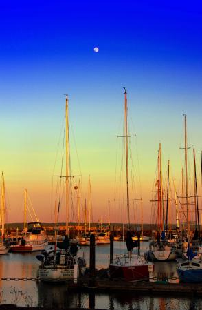 Port Townsend Inn: The Marina as the sun began to set~