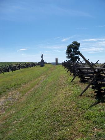 Sharpsburg, MD: the sunken road